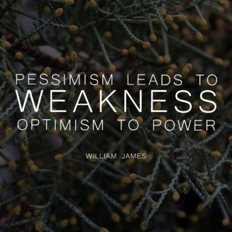 Pessimism lets to William James